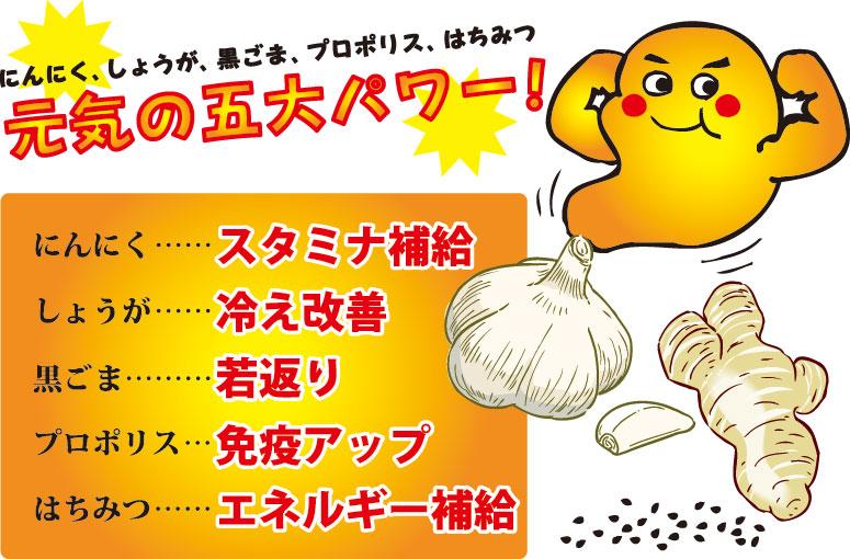 にんにく生姜画像2
